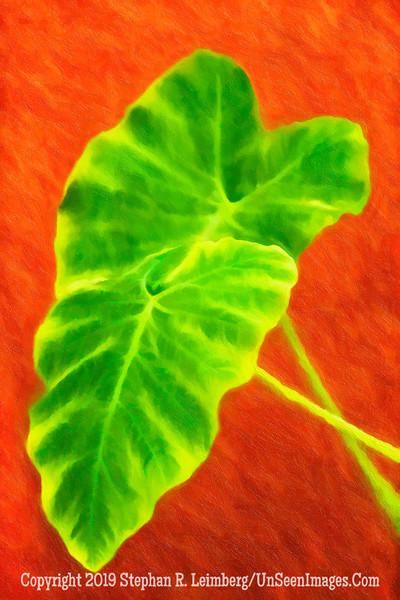 Green Leaf at IAA - PAINTING - Copyright 2015 Steve Leimberg - UnSeenImages Com _M1A2556