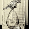 Peonies in Bottle II - B&W Copyright 2015 Steve Leimberg - UnSeenImages Com A8438664