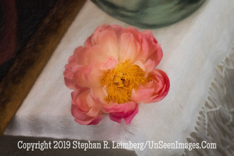 Peony on Table - PAINTING - Copyright 2015 Steve Leimberg - UnSeenImages Com _Q2Q2191