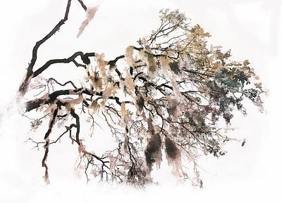 Hy koo - PAINTING - Copyright 2018 Steve Leimberg UnSeenImages Com _DSF4946