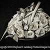 Roses PAINTING B&W - Copyright 2015 Steve Leimberg - UnSeenImages Com A8437958