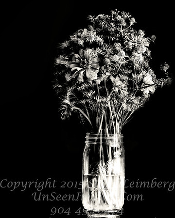 Becky's Flowers - II B&W Copyright 2016 Steve Leimberg - UnSeenImages