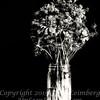 Becky's Flowers - II B&W Copyright 2016 Steve Leimberg - UnSeenImages