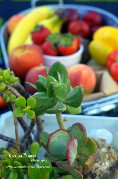 """Jade <a href=""""http://karinaboese.smugmug.com/gallery/4715409_6eWPG/1/321195282_fM4Pg#321195282_fM4Pg""""> Fresh Produce DP June 28, 2008</a>"""