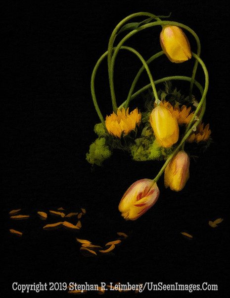 Tulips PAINTING - Copyright Steve Leimberg - UnSeenImages Com A8437915
