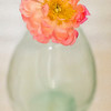Peony in Glass Jar - Copyright 2015 Steve Leimberg - UnSeenImages Com _Q2Q2215