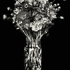 Becky's Flowers B&W - Copyright 2016 Steve Leimberg - UnSeenImages Com