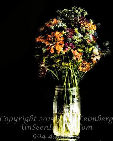 Becky's Flowers - II Copyright 2016 Steve Leimberg - UnSeenImages