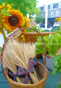Easton Farmers' Market, 7/19/2014