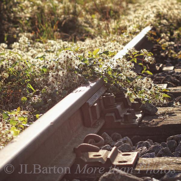 Abandoned train line in Lower Austria