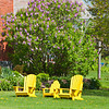 Three Yellow chairs in Spring
