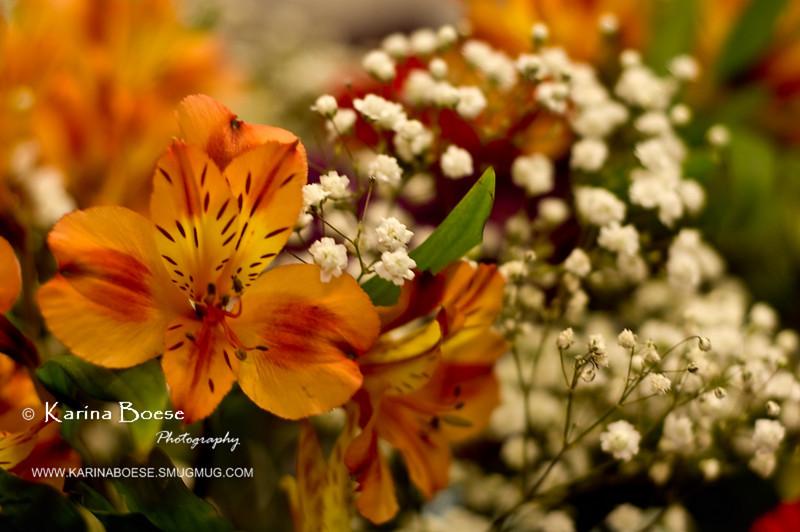 Peruvian Lily / Alstroemeria (bouquet)