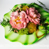 Peony in Green Bowl - Copyright 2015 Steve Leimberg - UnSeenImages Com _Q2Q2261