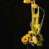Tulips PAINTING II -  Copyright 2015 Steve Leimberg - UnSeenImages Com A8437859