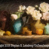 Flower Still Life  Night of Elio Camancho Demo - Abstract Homage  - Copyright 2014 Steve Leimberg - UnSeenImages Com _H1R1074