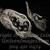 Seed Pod III - B&W  Copyright 2015 Steve Leimberg - UnSeenImages Com _H1R5694