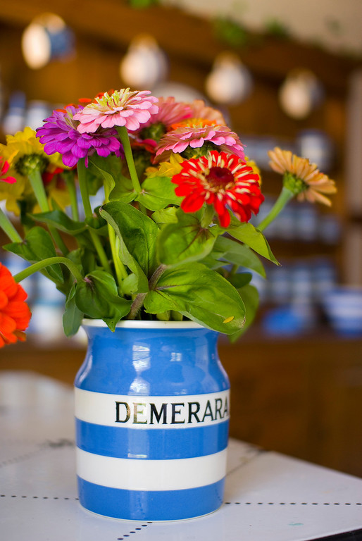Zinnias in Cornishware.