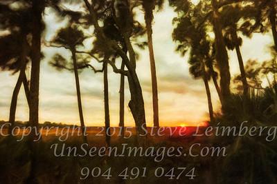 Sunset Through Trees II - PAINTING - Copyright 2017 Steve Leimberg - UnSeenImages Com _Z2A4747