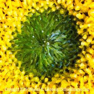 Heart of Sunflower - PAINTING Copyright 2018 Steve Leimberg UnSeenImages Com 2018-07-31 10-38-28 (A,Radius8,Smoothing4)