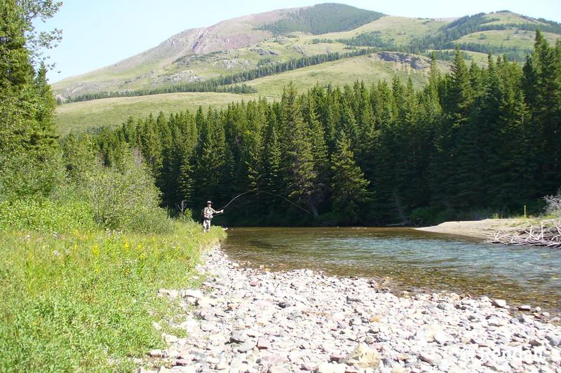 Crowsnest River Alberta Canada
