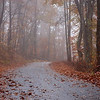 A foggy road in a private community in western North Carolina.