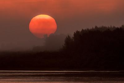 Foggy sunrise 2015 August 29th