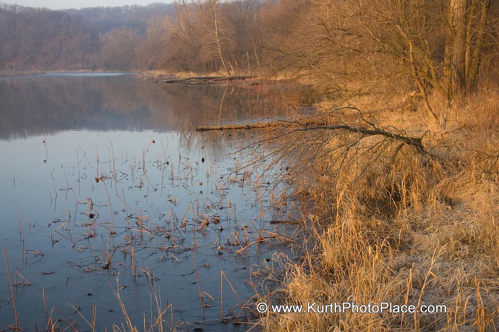 Fontonelle Forest Wetlands