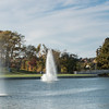 Forest Park Nov 3 2013-1308