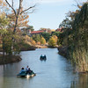 Forest Park Nov 3 2013-1309