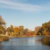 Forest Park Nov 3 2013-1296