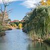 Forest Park Nov 3 2013-1301