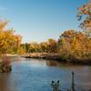 Forest Park Nov 3 2013-1297