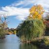 Forest Park Nov 3 2013-1302