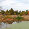 Forest Park Pano 1