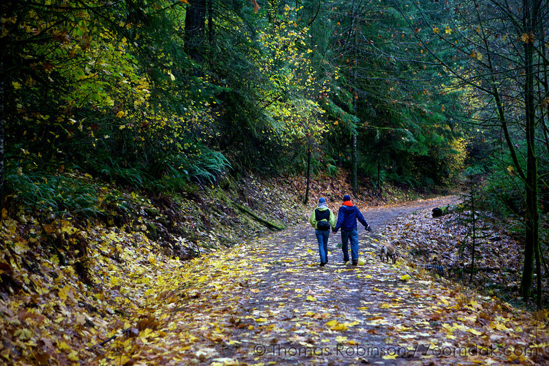 A couple stroll down a leaf strewn pathway in the forest.