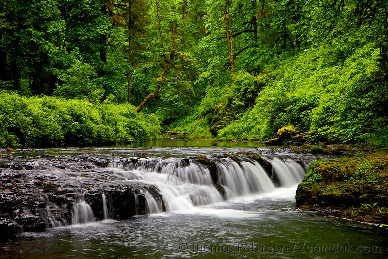 Silver Creek, Silver Falls State Park