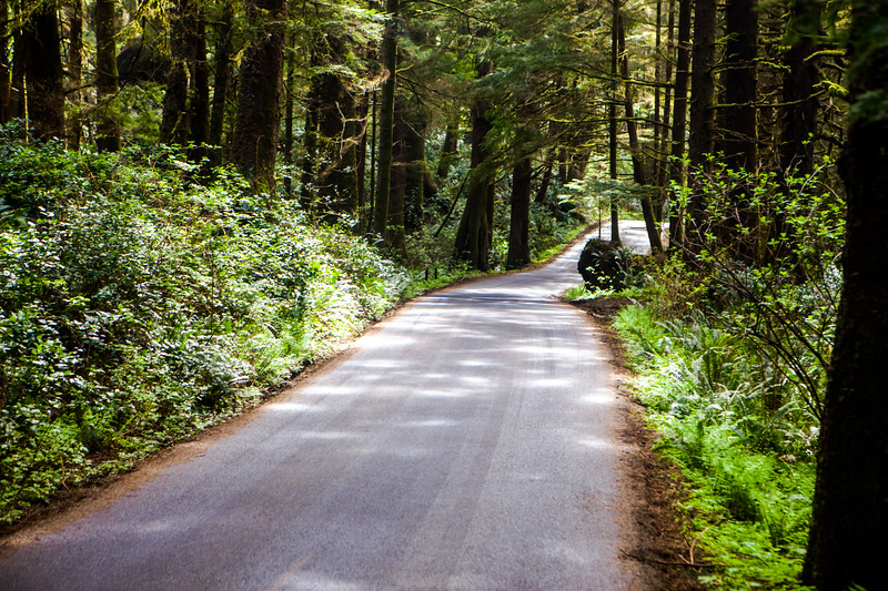 Ecola State Park Road