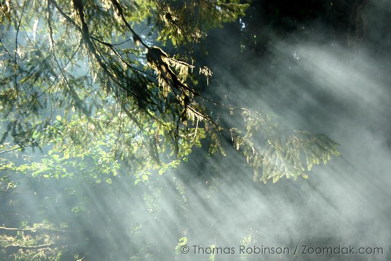 25July2005_0038b