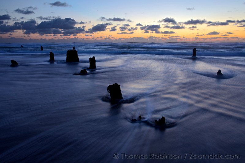 Waves wash through the stumps of the Ghost Forest at twilight in Neskowin, Oregon. <br /> <br /> Though nobody knows the origins of the ghost forest, it is theorized that sometime within the last 2,000 years a cataclysmic earthquake caused this chuck of forest to drop to sea level. Then preserved by sand and mud, they are around today rather than naturally eroding.