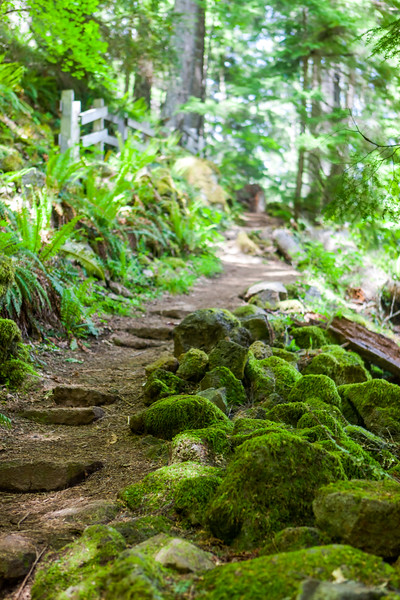 Watson Falls Trail