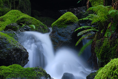 © Joseph Dougherty. All rights reserved.   Running stream flowing over moss-covered rocks.