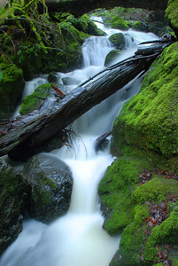© Joseph Dougherty. All rights reserved.   Cataract Falls plummeting down Mt. Tamalpais.