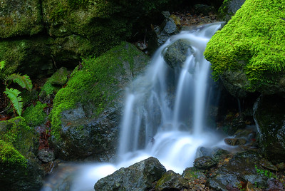© Joseph Dougherty. All rights reserved.   A small waterfall sliding over moss-covered rocks.