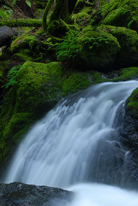 © Joseph Dougherty. All rights reserved.   Cataract Falls close-up.