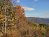 ShenandoahNationalParkViewFall18