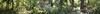 PointDefianceRhododendronGardenPanoramic1