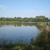 De Wijers is een uniek vijvergebied in het hart van Limburg. Hier fiets je tussen 1175 vijvers boordevol zeldzame dier- en plantensoorten. Maar ook door prachtige landschappen vol bossen, weiden en heidegebieden. Maar wie De Wijers zegt, zegt niet alleen natuur, maar een unieke combinatie van natuur en cultuurhistorische domeinen en kastelen. Overal in het landschap duiken prachtige kastelen, oude hoeves en uitgestrekte parken op.