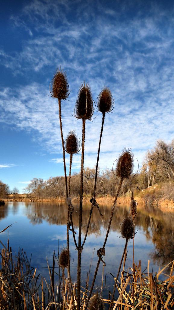 Fountain Creek Regional Park