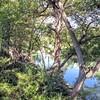 Medina River at Castroville Regional Park