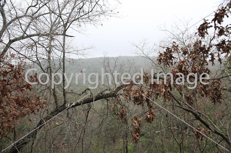 Friedrich Wilderness Park 009